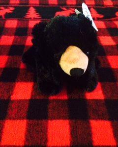 Medium Bear