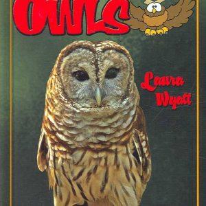 owl book