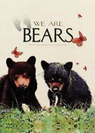 we are bears